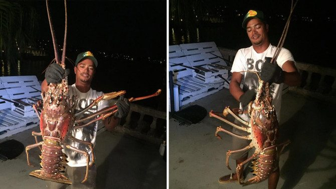 Fisherman Discovers Giant 14-Pound Lobster