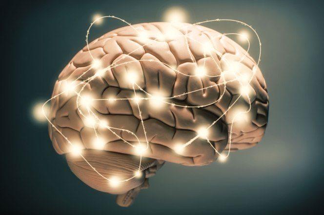 brain activity when drinking coffee